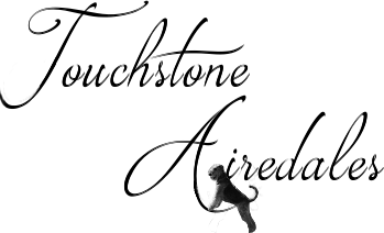 touchstone-logo-tight